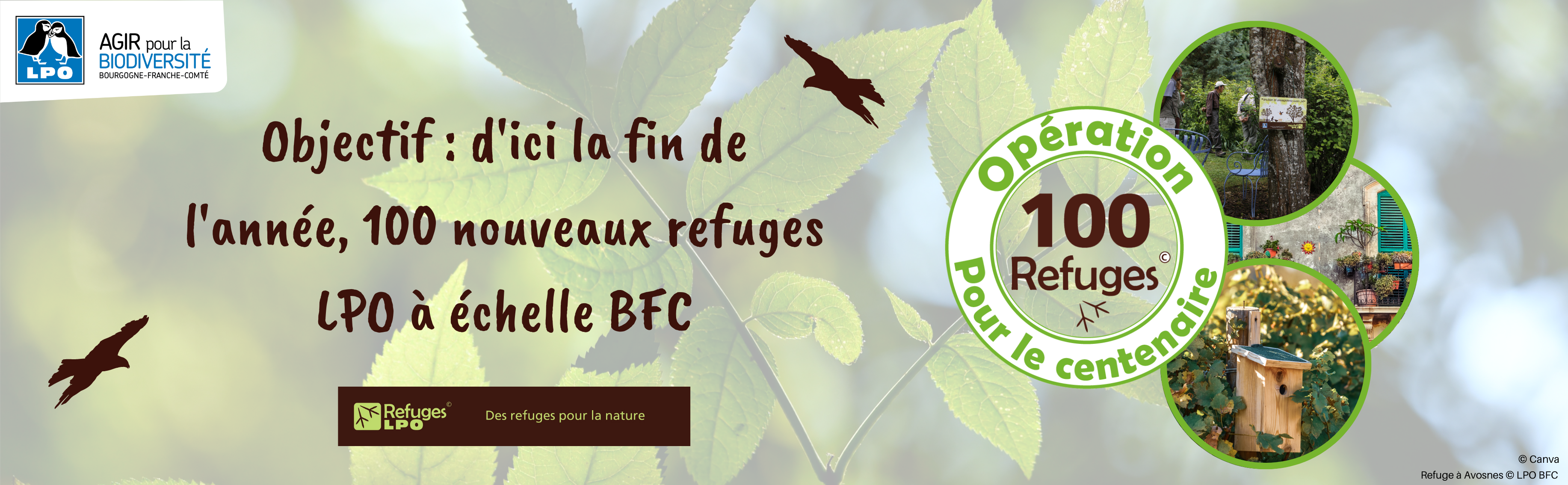 https://bourgogne-franche-comte.lpo.fr/2021/02/15/lancement-de-loperation-100-refuges-pour-le-centenaire/